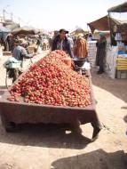 biougra market 2