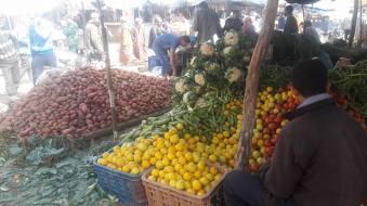 Biougra market